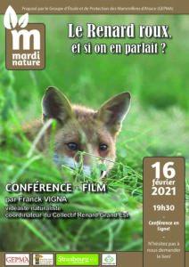 Conférence Mardi Nature 16 février 2021: Le Renard roux, et si on en parlait? @ Conférence en ligne