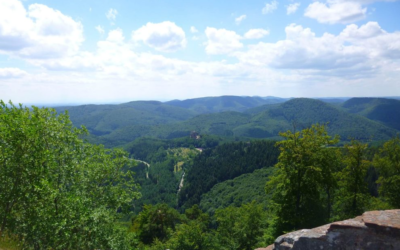 [Communiqué de presse] Alsace Nature opposée au projet d'autoroute B10 en Rhénanie- Palatinat