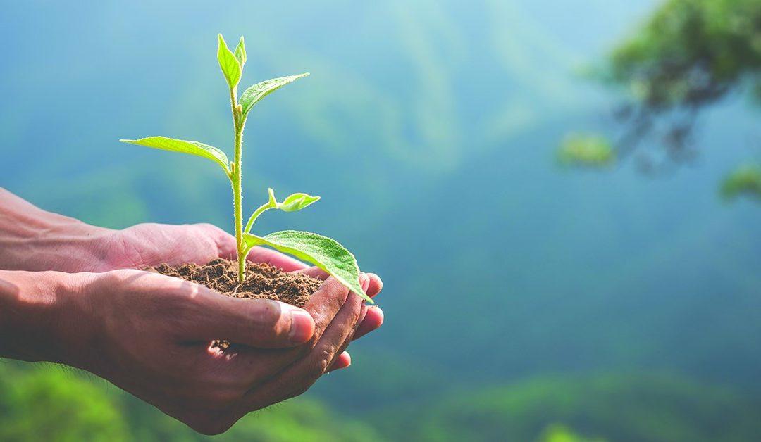 [Lectures-débat] Les fondamentaux de l'écologie #2