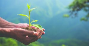 [Lectures-débat] Les fondamentaux de l'écologie #2 @ événement en ligne - (en direct du CINE de Bussiere Strasbourg