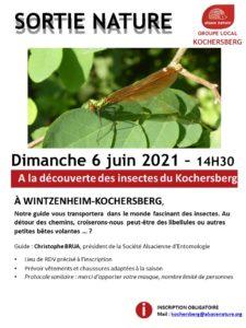 [Sortie Nature] A la découverte des insectes du Kochersberg @ Wintzenheim Kochersberg   Wintzenheim-Kochersberg   Grand Est   France