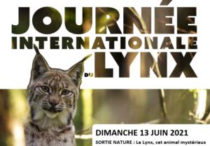 [Sortie Nature] Le Lynx, cet animal mystérieux @ secteur d'Orbey