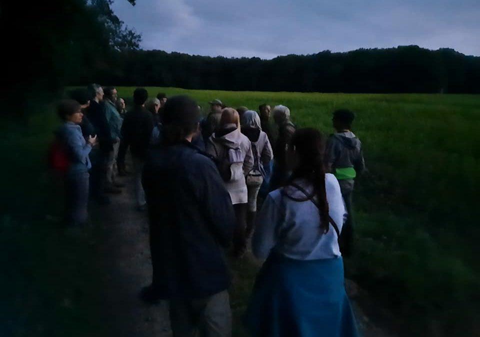 Rencontre avec la faune nocturne en forêt avec l'association HERON