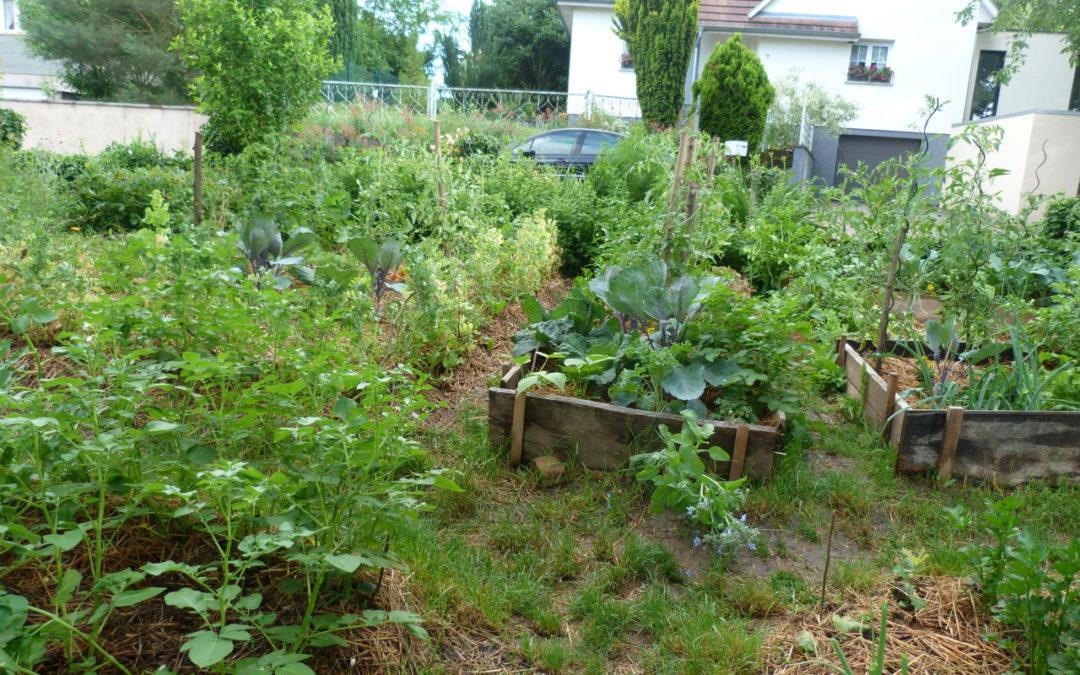 [Atelier nature] Visite d'un jardin en permaculture