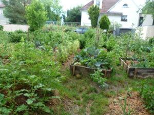 Visite d'un jardin en permaculture @ Gougenheim | Gougenheim | Grand Est | France