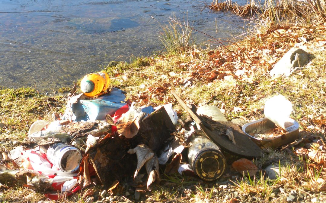 [Chantier] Collecte de déchets autour du lac du Ballon