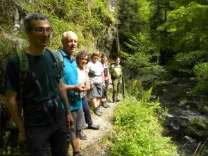 [Sortie nature] «L'eau vive des gorges de la Lauch» @ Linthal | Linthal | Grand Est | France
