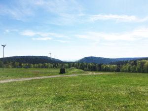 Prairie et de la forêt du Langacker menacées par le projet de TRAIL CENTER @ Au lieu-dit Langacker | Wangenbourg-Engenthal | Grand Est | France