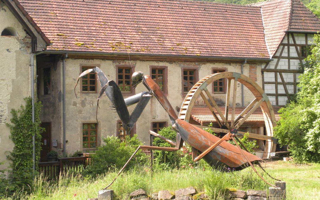 """[Sortie nature] """"De l'eau au moulin"""""""